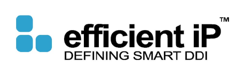 efficient Ip Partner